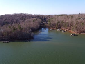 port bass lake hartwell